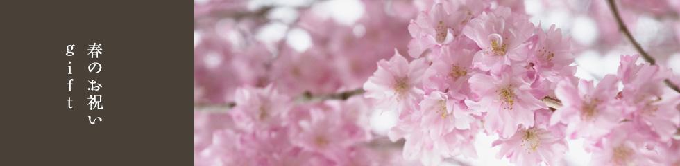 春のお祝いgift