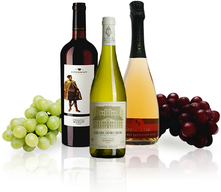 オーストリアワイン Austrian Wine